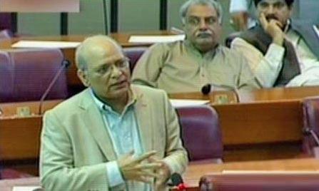 Mushahidullah asks: Which state organ didn't err?